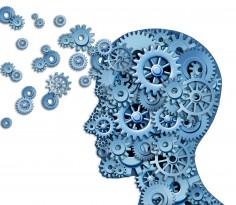 brain thinking gears