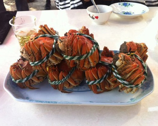 crabs tied up