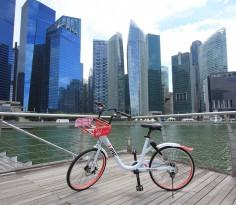 isoteam sg bike