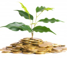 dividend (1)
